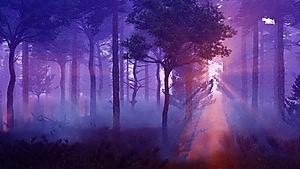 murkyforest (2)