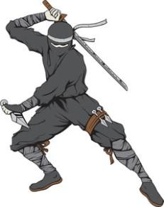 vector-ninja_MytQtqLu_thumb